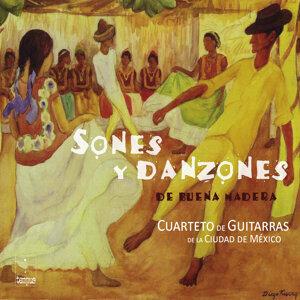 Cuarteto de Guitarras de la Ciudad de México 歌手頭像