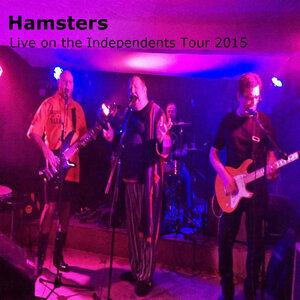 Hamsters 歌手頭像