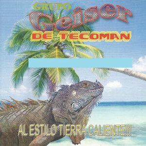 Grupo Geiser De Tecoman 歌手頭像