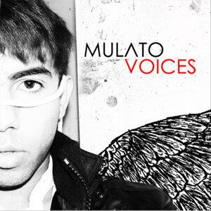 Mulato 歌手頭像