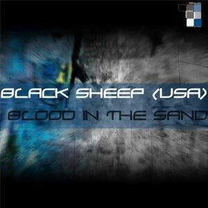Black Sheep (USA) 歌手頭像
