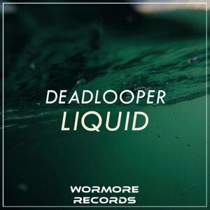DeadLooper 歌手頭像