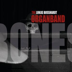 Lukas Bosshardt, OrganBand 歌手頭像
