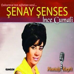Şenay Şenses 歌手頭像