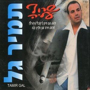 Tamir Gal 歌手頭像