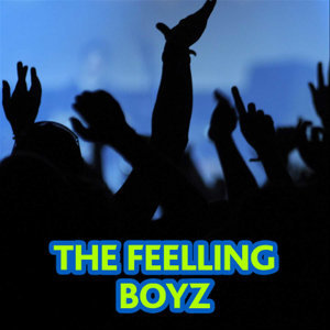 The Feelling Boyz 歌手頭像