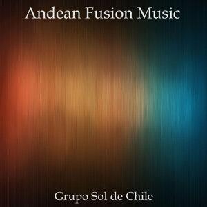 Grupo Sol de Chile 歌手頭像