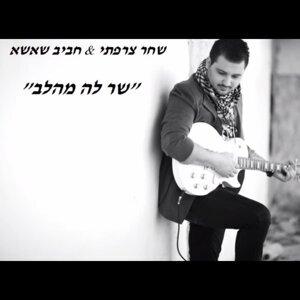 Shahar Tzarfati, Haviv Shasha 歌手頭像