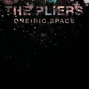 The Pliers 歌手頭像