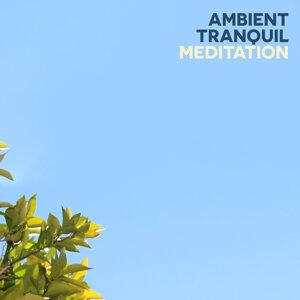 Ambient Meditation Music 歌手頭像