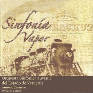Orquesta Sinfónica Juvenil del Estado de Veracruz (OSJEV) 歌手頭像