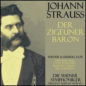 Wiener Symphonieker, Wiener Kammerchor 歌手頭像