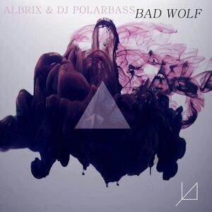 Albrix & DJ PolarBass 歌手頭像
