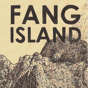 Fang Island 歌手頭像