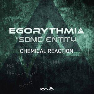 Egorythmia, Sonic Entity, Egorythmia, Sonic Entity 歌手頭像