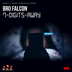 Bro Falcon 歌手頭像