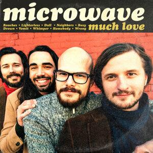 Microwave 歌手頭像