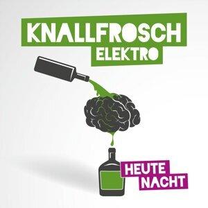 Knallfrosch Elektro 歌手頭像
