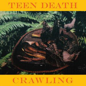 Teen Death 歌手頭像
