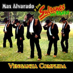 Max Alvarado y Los Sultanes Del Bravo 歌手頭像