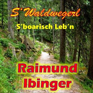 Raimund Ibinger 歌手頭像