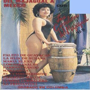 Del Majagual A Mexico 歌手頭像