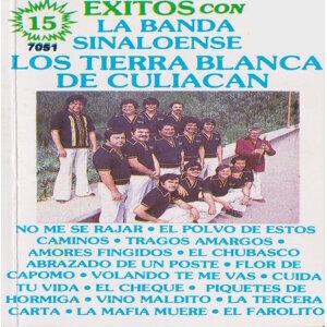 Los Tierra Blanca De Culiacan 歌手頭像