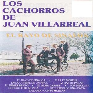 Cachorros De Juan Villarreal 歌手頭像