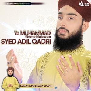 Syed Adil Qadri 歌手頭像