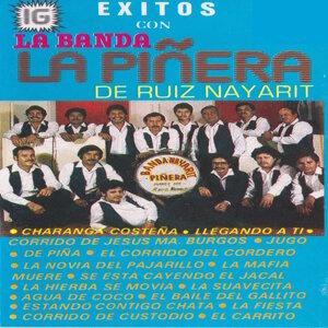 La Banda La Pinera De ruiz Nayarit 歌手頭像