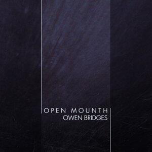 Owen Bridges 歌手頭像