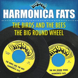 Harmonica Fats