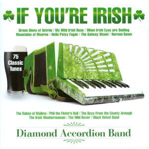 The Diamond Accordion Band 歌手頭像