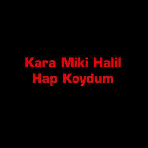 Kara Miki Halil 歌手頭像