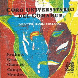 Coro Universitario del Comahue 歌手頭像
