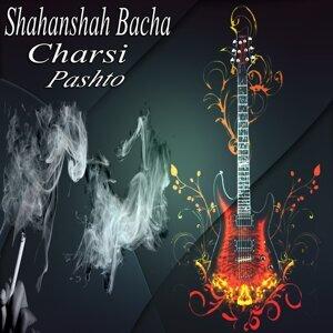 Shahanshah Bacha 歌手頭像
