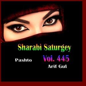 Arif Gul 歌手頭像