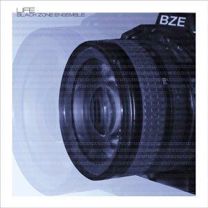 Black Zone Ensemble 歌手頭像