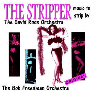 David Rose Orchestra, Bob Freedman Orchestra, David Rose Orchestra, Bob Freedman Orchestra 歌手頭像