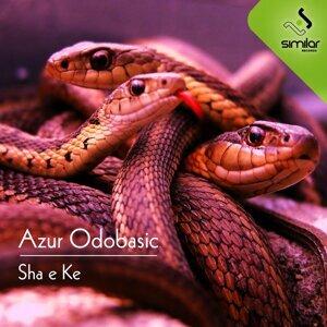 Azur Odobasic 歌手頭像