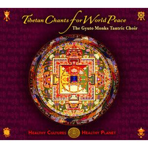 The Gyuto Monks Tantric Choir 歌手頭像