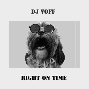 DJ Voff 歌手頭像