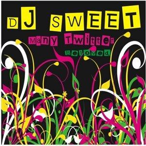 DJ Sweet 歌手頭像