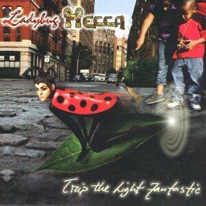 Ladybug Mecca 歌手頭像