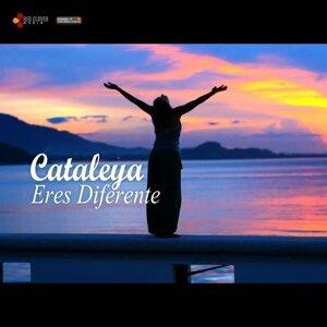 Cataleya 歌手頭像