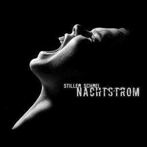 Nachtstrom 歌手頭像