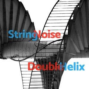 String Noise 歌手頭像