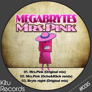 Megabrytes 歌手頭像
