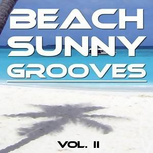 Beach Sunny Grooves アーティスト写真