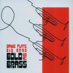 David Plate Big Band 歌手頭像